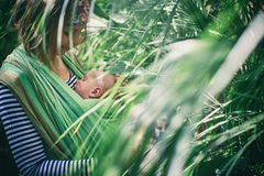 A young mother with a baby in a sling is travelling in the jungle. A young mother with a baby in a sling is travelling in the tropical forest Royalty Free Stock Photo