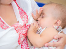 Young mother breastfeeds her baby. Royalty Free Stock Image