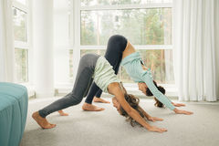 Young mother and daughter doing morning gymnastics Stock Images