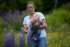 Young Mother & Daughter in Lupine Flowers Royalty Free Stock Photos