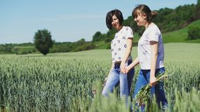 Two girls holding hands walking on nature. Young mother and daughter walking through a field of young wheat holding hands, talking to each other. Middle slow stock footage