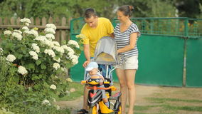 Young mother and father rolled a beautiful baby at the children's bike near flowers stock footage
