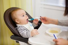 Young mother feeding her little baby son with porridge,who sitting in high baby chair for feeding. Kitchen, indoor stock photo