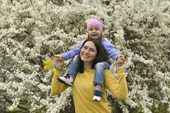 A young mother has put her little daughter on her shoulders and plays with her in the blooming garden stock image