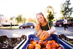 Young mother with her baby boy at outdoor market. Royalty Free Stock Images