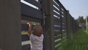 Young mother with her baby boy son brothers climbing on a garden fence - Family values warm color summer scene. White caucasian stock footage
