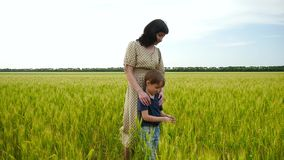 A young mother and her child are standing on a wheat field, touching her ears with their hand stock footage