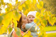Young mother with her children in the park autumn Royalty Free Stock Photos
