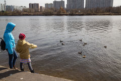 Young mother with her daughter and ducks. Young mother with her daughter looking at the ducks in Moscow Royalty Free Stock Images