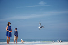 Young mother and her little son feeding seagulls Stock Photography