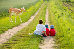 Young mother with her two children watching young foe Royalty Free Stock Images