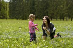 A young mother with a little daughter playing on a green meadow royalty free stock photo