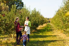 Young mother picking apples for her daughter stock photography