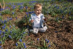 Young mother playing and talking with a baby boy son on a muscari field in Spring - Sunny day - Grape hyacinth - Riga royalty free stock image