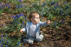 Young mother playing and talking with a baby boy son on a muscari field in Spring - Sunny day - Grape hyacinth - Riga royalty free stock images