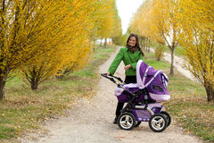 Young mother with pram. In autumn city park Stock Photos
