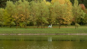 Young mother with pram strolle walks by lake. Autumn daytime. Smooth dolly shot. Young mother with the pram walks on the lake. Autumn daytime. Smooth dolly shot stock video footage