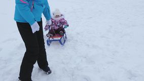 Young mother rolls little baby on sled along snowy road in winter. Child is naughty and cries while sitting in sled stock video footage