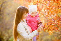 Young mother shows kid girl fallen leaves on tree. Young mother showing kid girl fallen leaves on tree royalty free stock photos