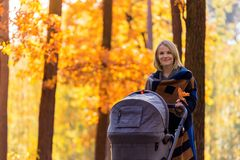 A young mother with a stroller walks through the autumn park Stock Image