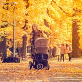 A young mother with a stroller walks through the autumn park. Walking with an infant in the open air in a pine forest. Newborn, family, child, parenthood Royalty Free Stock Image