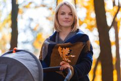 A young mother with a stroller walks through the autumn park Stock Photography