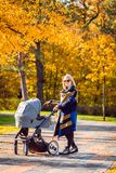 A young mother with a stroller walks through the autumn park. Walking with an infant in the open air in a pine forest. Newborn, family, child, parenthood Royalty Free Stock Photos