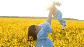 Young mother throws baby into sky and laughs. Baby having fun in yellow canola field. Love, family, joy concept stock video
