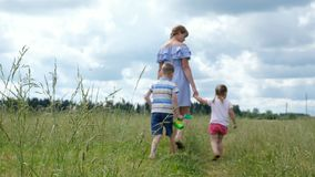 Young mother with two young children walking in the field on the grass in summer. Happy family on a walk. stock footage