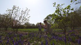 Young mother walking with a baby boy son on a muscari field in spring - sunny day - grape hyacinth. Riga, Latvia stock footage