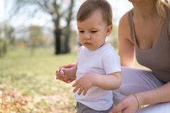 Young mother walking with her baby boy child son in a park under Sakura trees stock images