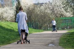 Young mother walking in park with baby in trolley Stock Photography