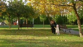Mother walks with his lovely cute infant daughter on autumn lawn in pictorial city park with trees and fallen yellow leaves. Young mother walks with his lovely stock video footage
