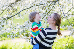 Young mum and little kid boy in blooming garden stock photo