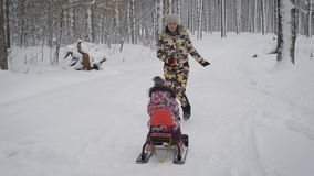 Young mum rolls on a sled a little girl, they play in a winter park, where it grows a lot of tall trees. Both girls are stock video footage