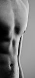 Young muscle man chest and abdominals. Focus on young muscle man chest and abdominals (black and white Royalty Free Stock Photography