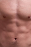 Young muscle man chest and abdominals. Focus on young muscle man chest and abdominals (colors Stock Image