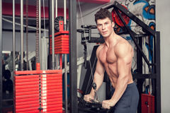 Young muscular bodybuilder exercising in the gym Stock Image