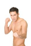 Young muscular boxer Stock Photos