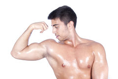 Showing biceps Stock Photos