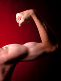 Young muscular man Stock Photography