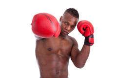 Young muscular man with boxing gloves Royalty Free Stock Image