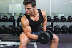 Young muscular man exercising with dumbbell Royalty Free Stock Photos