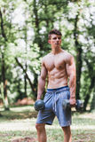 Young muscular man posing with weights. Outdoors stock images