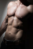 Young muscular mans torso. (chest and abs Stock Image