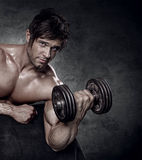 Young muscular sexy man workout in gym Stock Images
