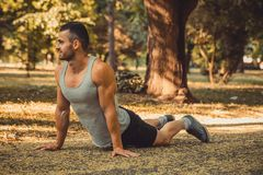 Sportsman doing fitness exercise. Young muscular sportsman doing fitness exercise in the park. Sport, fitness,  workout concept Stock Photos