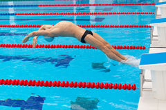 Young muscular swimmer jumping from starting block in a swimming pool.  royalty free stock photo