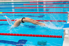 Young muscular swimmer jumping from starting block in a swimming pool Stock Image