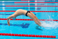 Young muscular swimmer jumping from starting block in a swimming pool Royalty Free Stock Photos